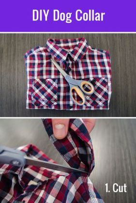 DIY Collar Top