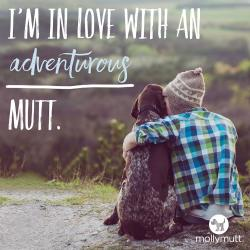 250px-mutt-day-adventurous